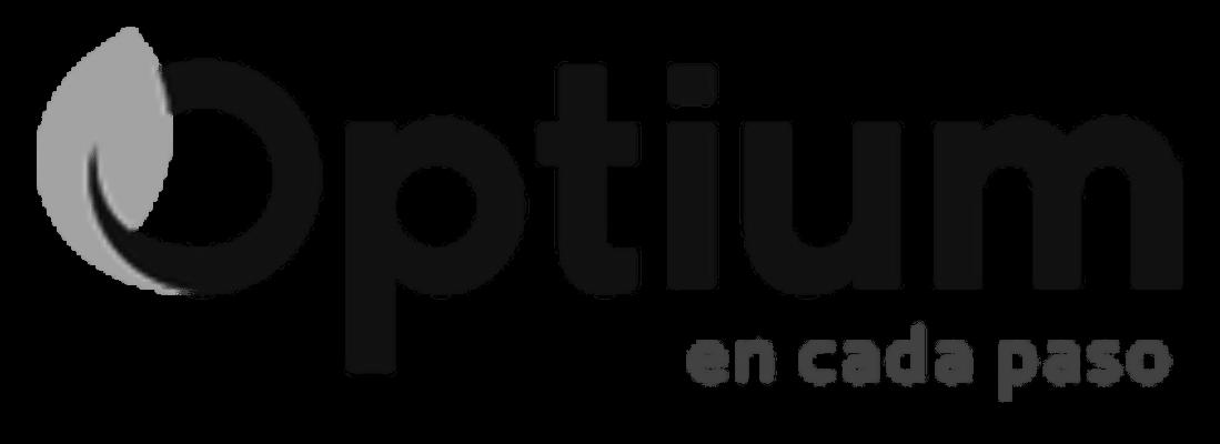 logo-optium-2019-negro